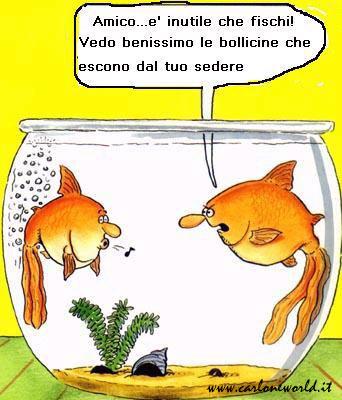 vignette simpatiche pesci